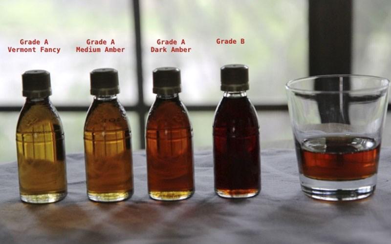 Phân loại maple syrup