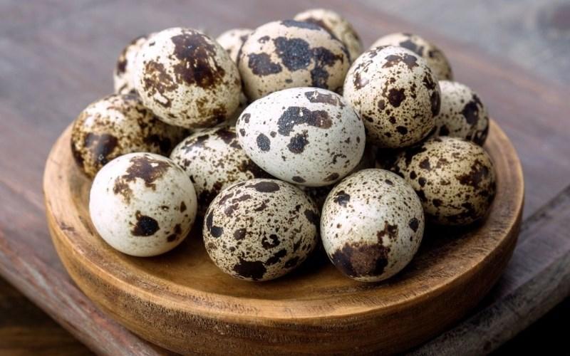 Thành phần dinh dưỡng của trứng cút
