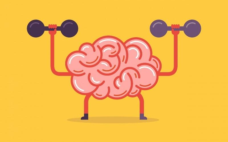 Cây xô thơm giúp cải thiện và hỗ trợ sức khỏe não bộ