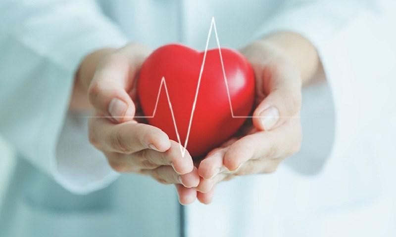 Lycopene hỗ trợ sức khỏe tim mạch