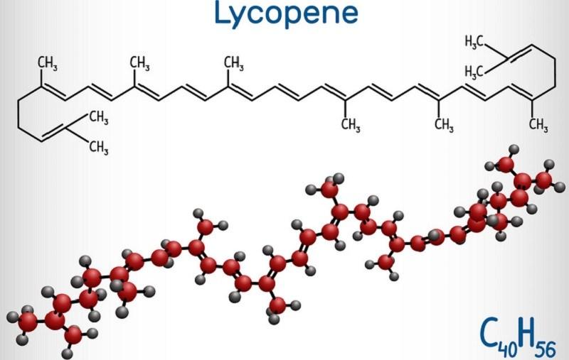 Đặc điểm của Lycopene