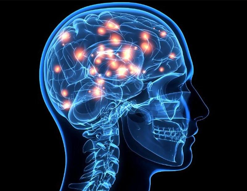 Cải thiện và hỗ trợ chức năng cho hệ thần kinh