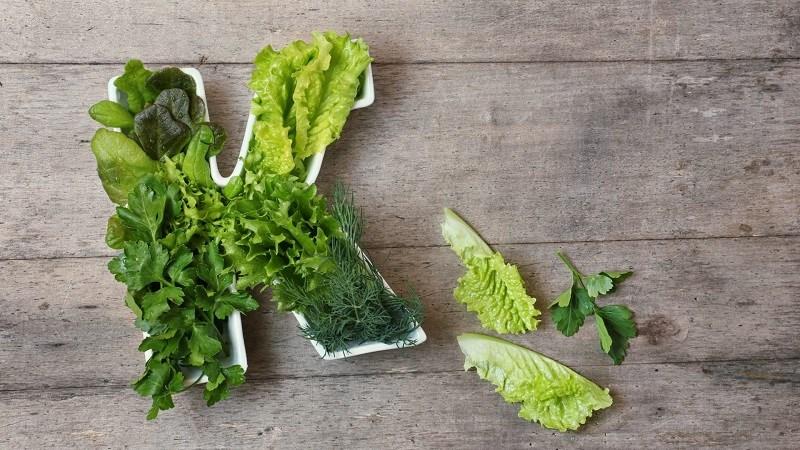 Cải cầu vồng cung cấp vitamin K cho cơ thể