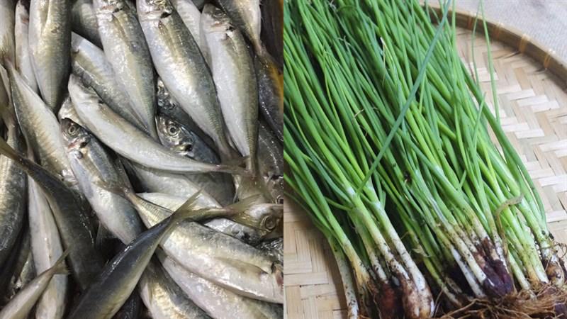 Nguyên liệu món ăn cá sòng nướng giấy bạc và nướng mỡ hành