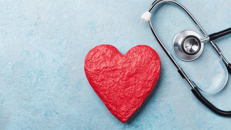Đậu hoa cúc hỗ trợ sức khỏe tim mạch