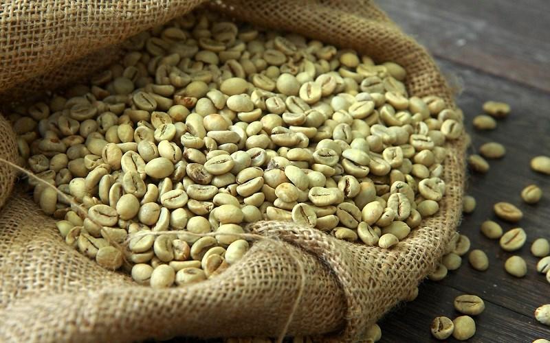 Cà phê xanh chứa nhiều caffein