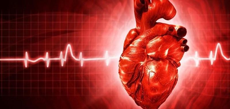 Măng cụt bảo vệ sức khỏe tim mạch