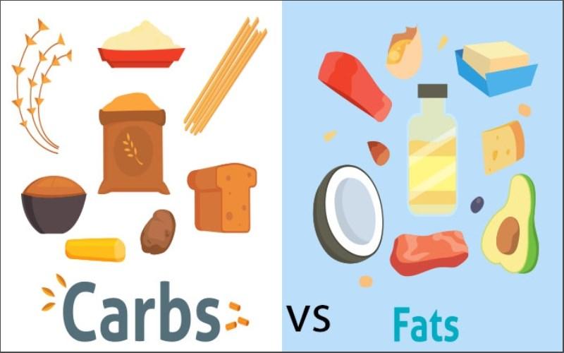 Ăn nhiều tinh bột và chất béo