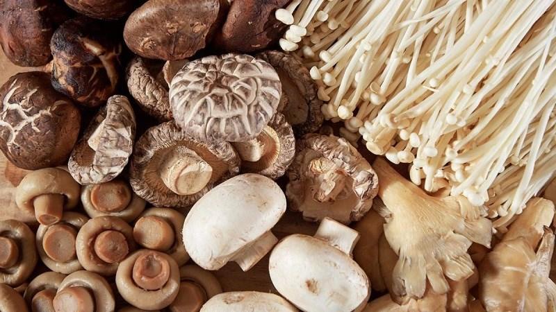 Biotin được tìm thấy trong nấm