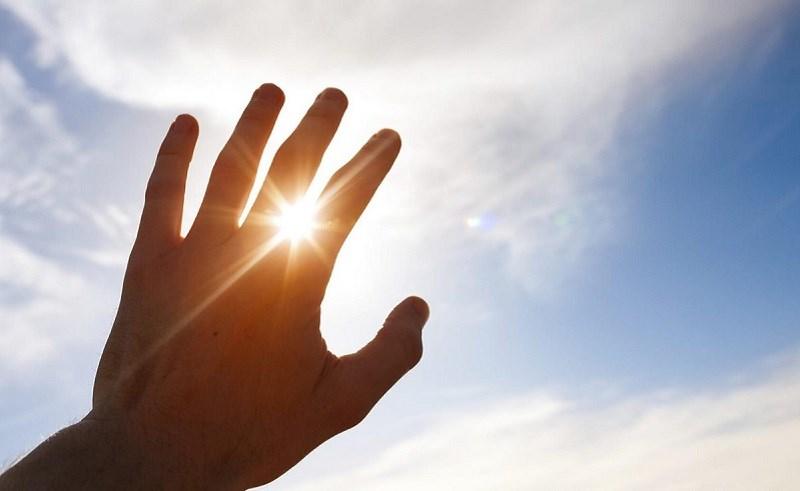 Dầu mè bảo vệ trước nhiều tác hại của tia UV