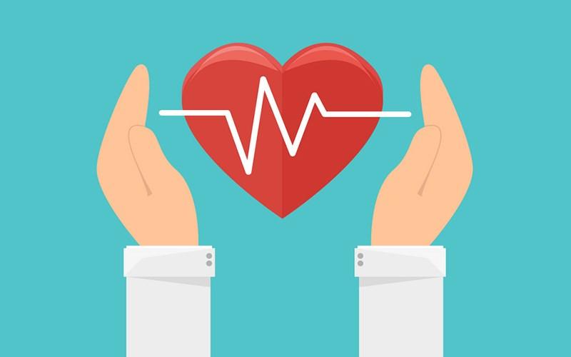 Hỗ trợ tim mạch