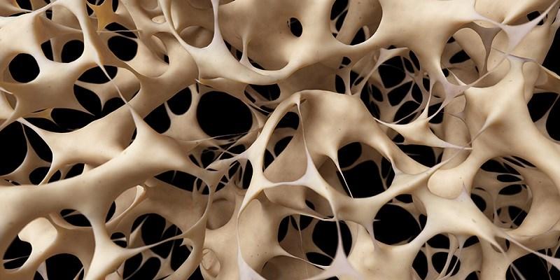 Ngăn ngừa loãng xương