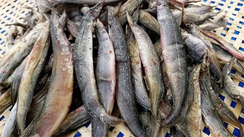 Khô cá chạch