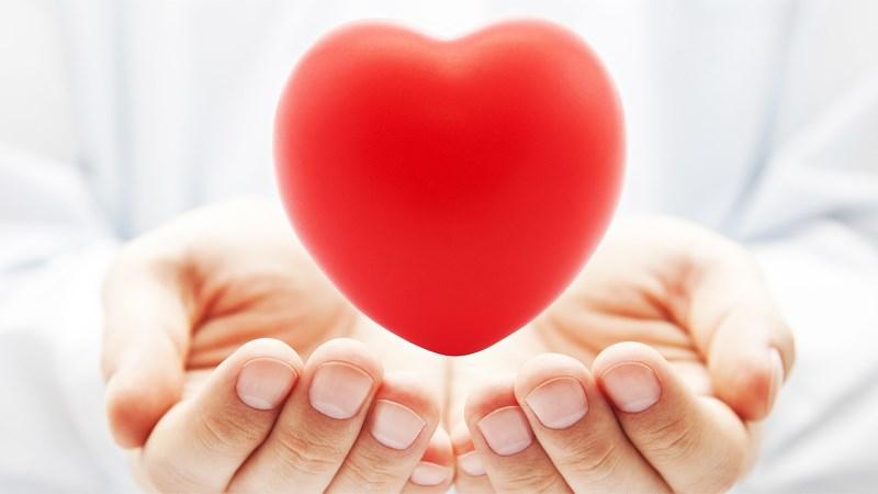 Quả phúc bồn tử giúp cải thiện sức khỏe tim mạch