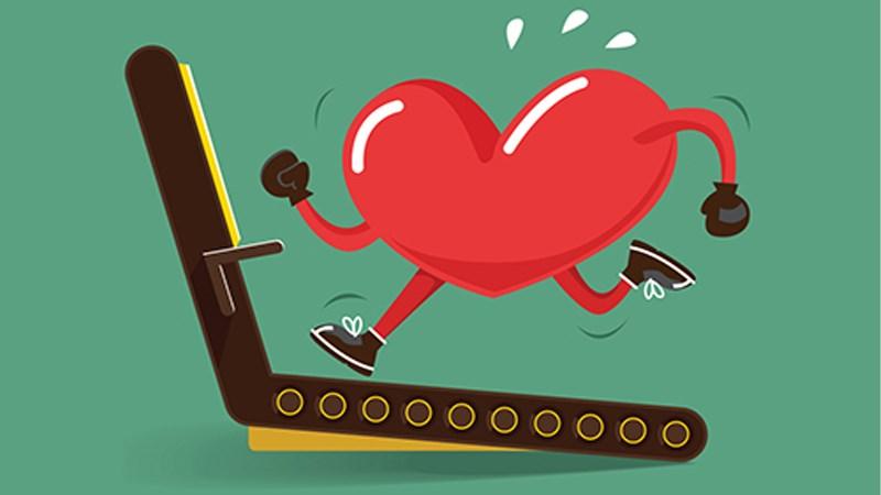 Rau mầm giúp cải thiện sức khoẻ tim mạch