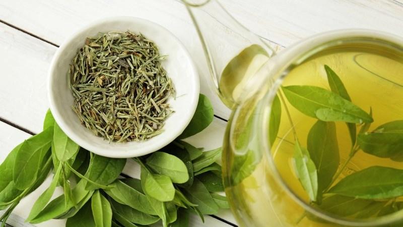 Lợi ích của trà xanh đối với não bộ