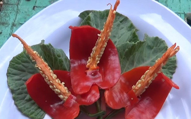 Tỉa hoa hồng từ ớt