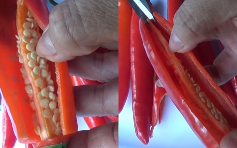Dùng kéo cắt bỏ lõi hạt tiêu