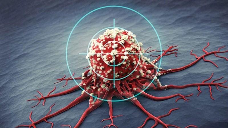 Ức chế sự phát triển của một số tế bào ung thư