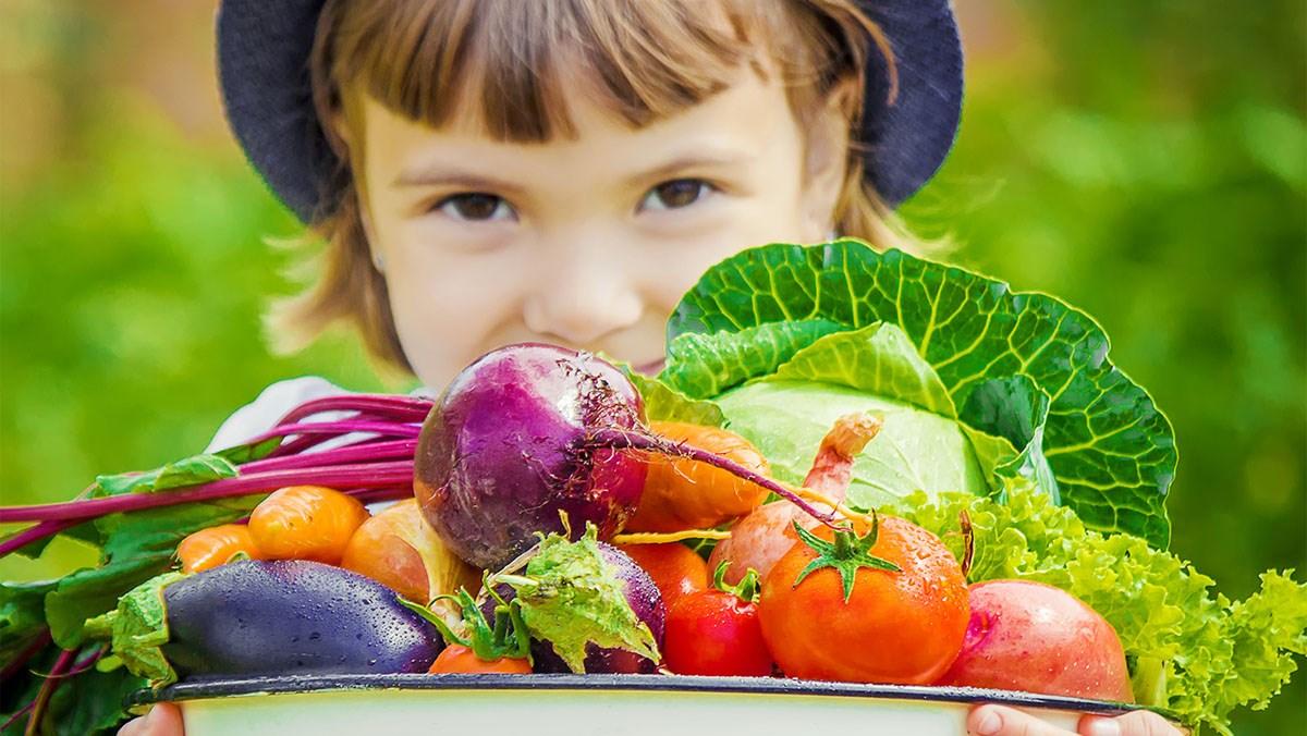 Cách tập cho bé ăn rau củ quả