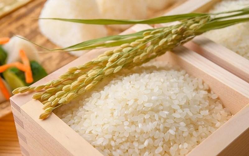 Ủ sầu riêng trong gạo