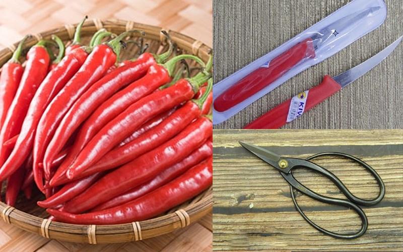 Nguyên liệu và dụng cụ cắt tỉa tiêu hồng