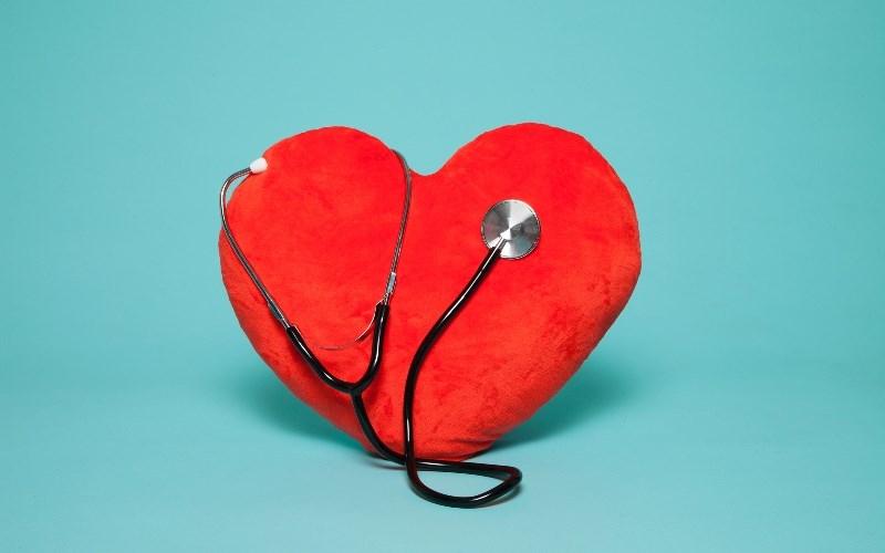 Hoa đậu biếc tốt cho tim mạch