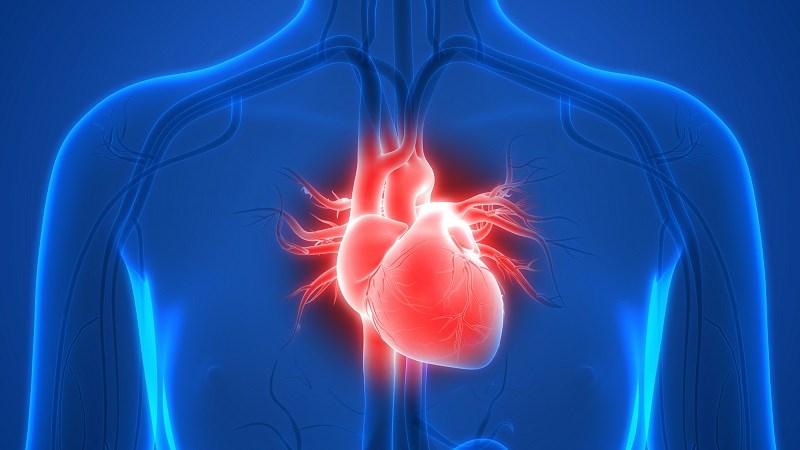 Có thể giảm nguy cơ mắc bệnh tim