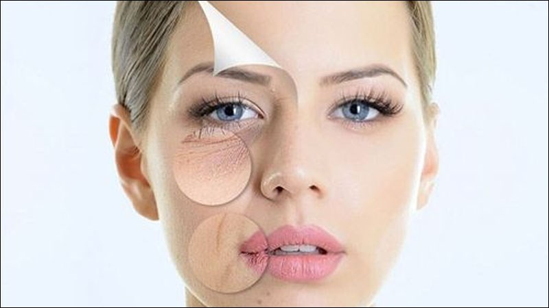 Sâm tố nữ chứa các chất chống oxy hoá
