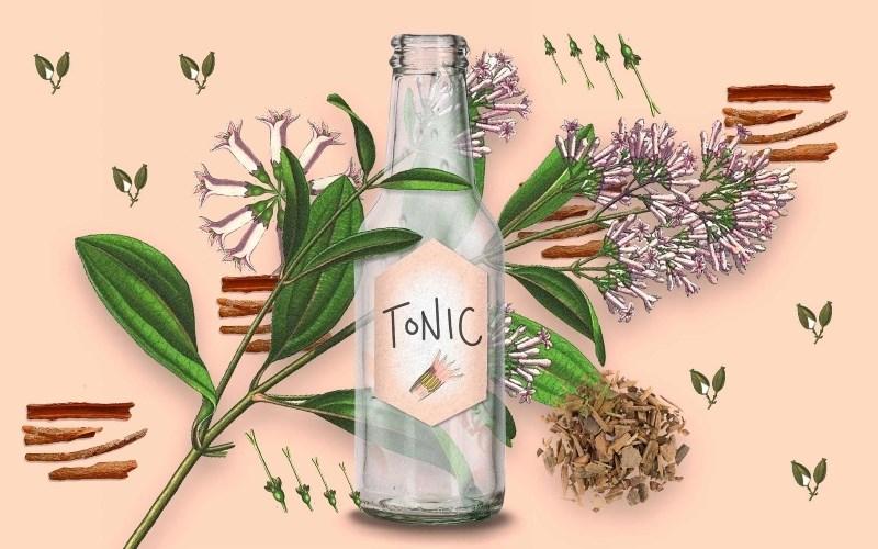 Quinine trong tonic water có an toàn không?