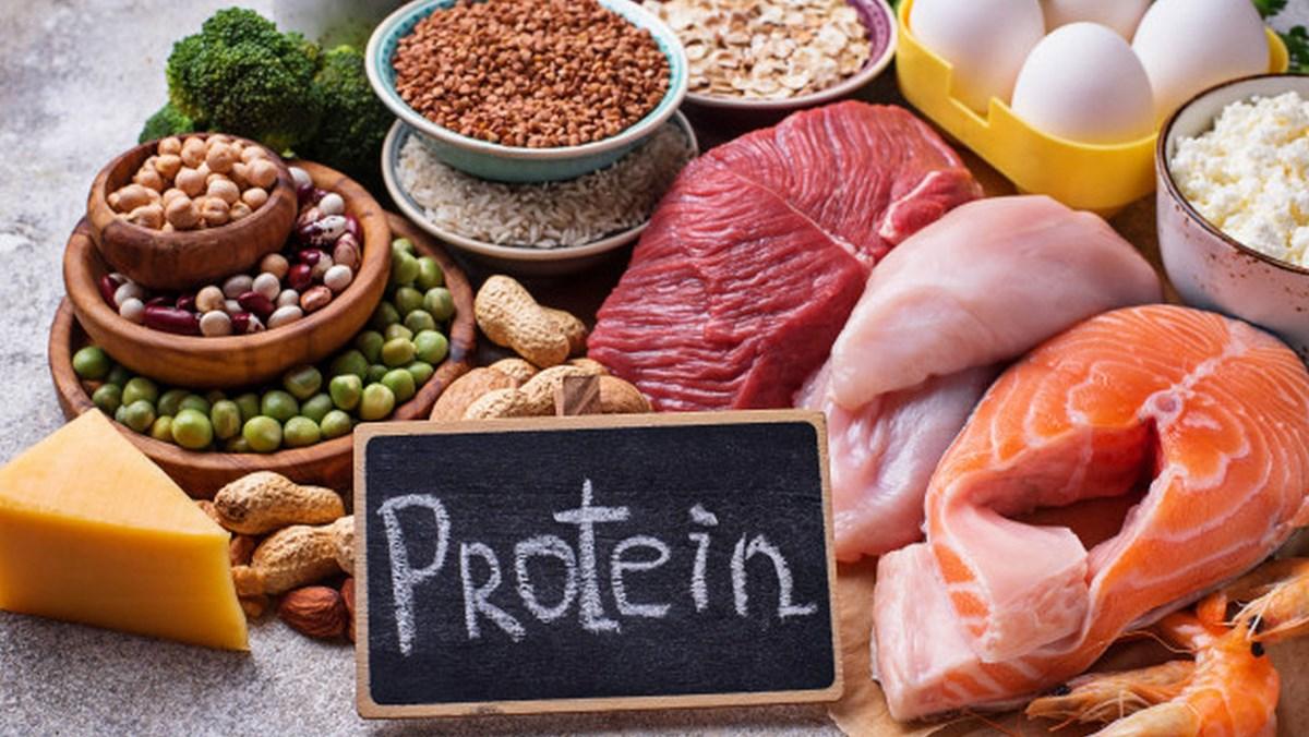 Chất đạm - Protein là gì? Protein có tác dụng gì với sức khỏe?