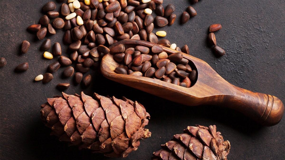 Hạt thông - pine nuts là gì