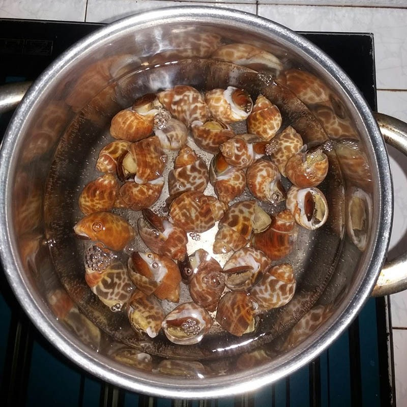 Bước 1 Sơ chế ốc hương Ốc hương xào bơ tỏi (Công thức được chia sẻ từ người dùng)