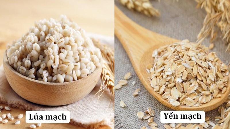 Phân biệt lúa mạch (đại mạch) và yến mạch