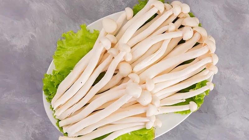 Nấm bạch tuyết - nấm hải sản là gì?