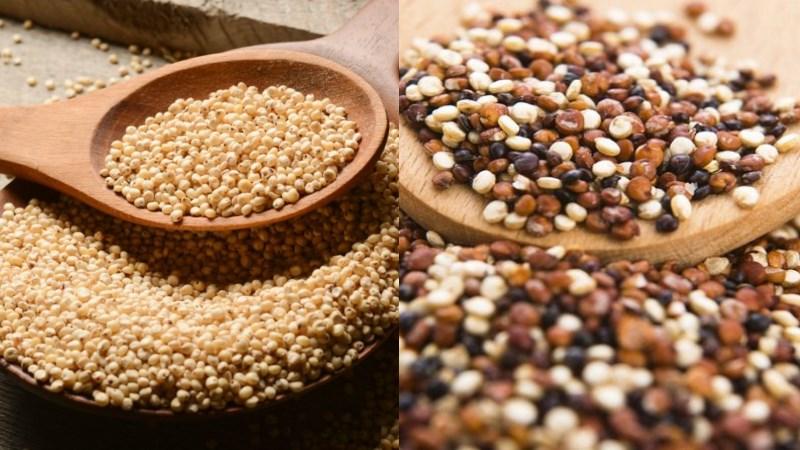 Hạt dền và Quinoa