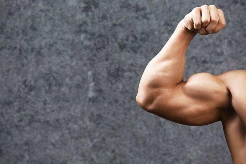 Xây dựng và duy trì cơ bắp