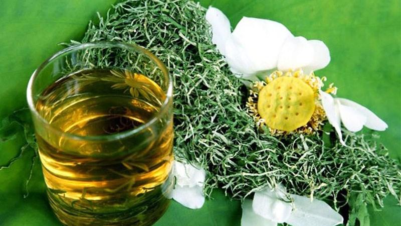 uống lá sen có tác dụng gì? cách uống nước trà lá sen đúng cách