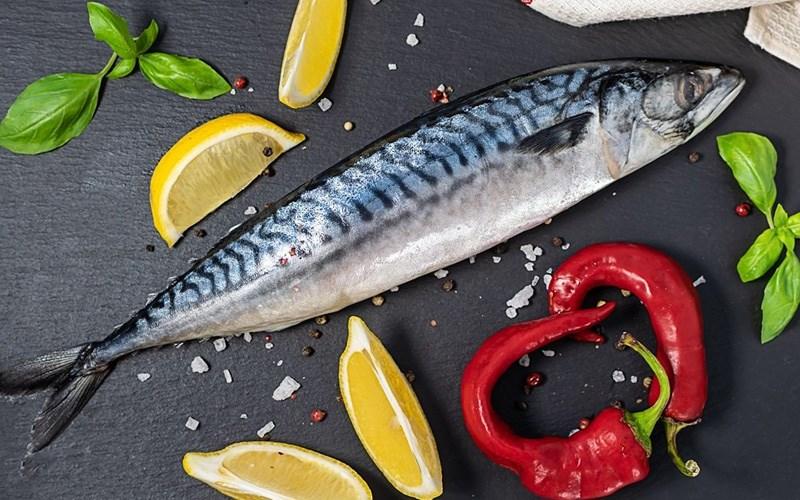 Cá thu có thân thon dài, nhiều thịt