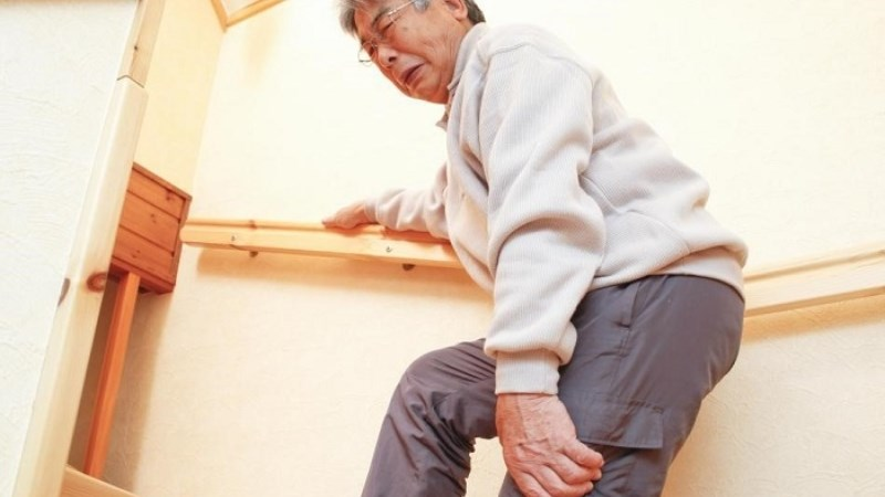 Bảo vệ xương và hỗ trợ quá trình đông máu
