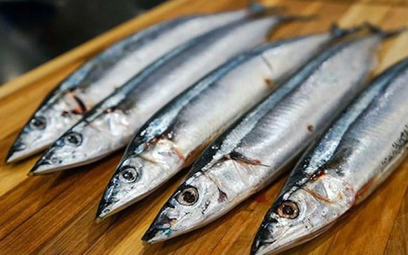 Cá thu Nhật (cá thu đao)