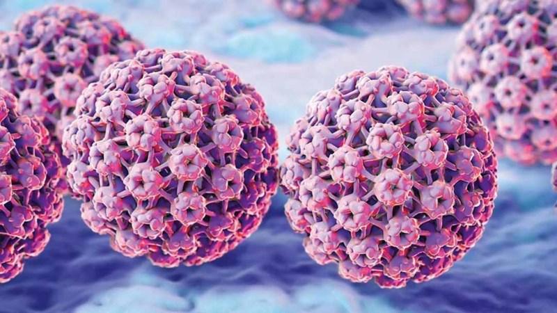 Phòng chống ung thư vú và tuyến tiền liệt