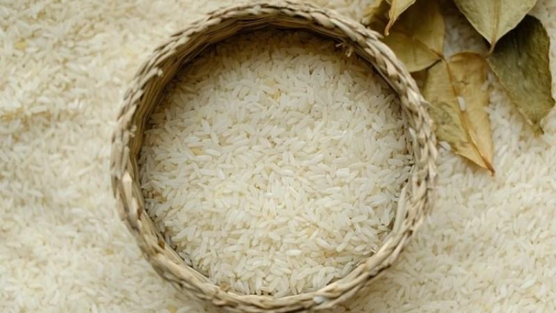 Gạo hữu cơ bán ở đâu, giá bao nhiêu?