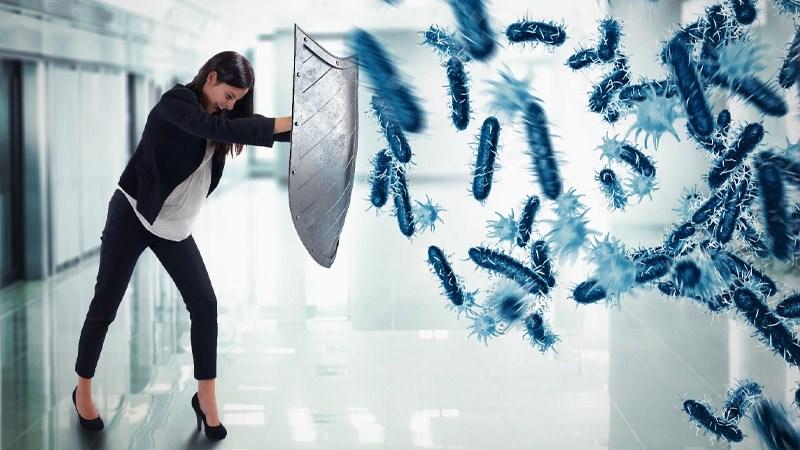 Củ sen có tính kháng khuẩn