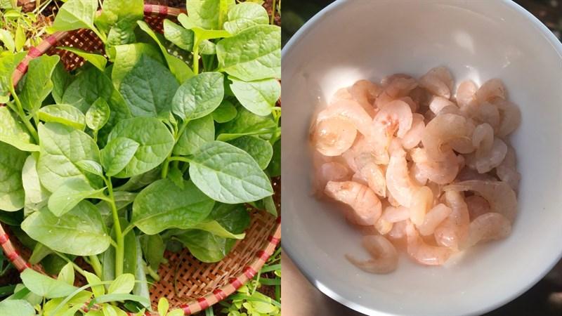Nguyên liệu món ăn canh mồng tơi nấu tép đồng