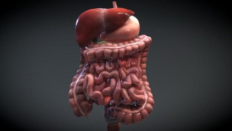 Làm dịu các bệnh tiêu hoá