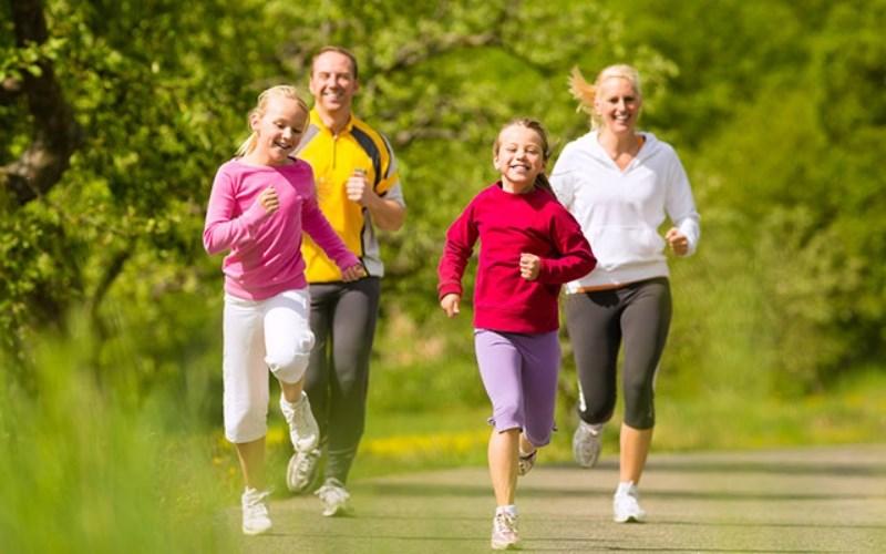 Nấm vân chi giúp tăng cường miễn dịch