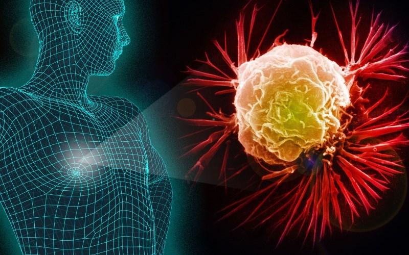 Nấm vân chi hỗ trợ ức chế sự phát triển của tế bào ung thư