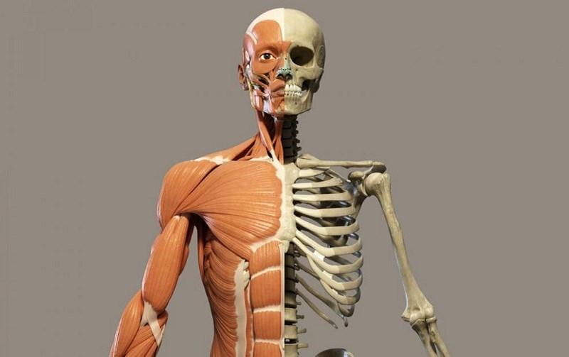 Người mắc bệnh về xương