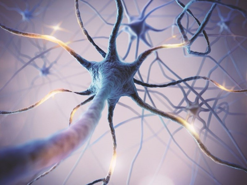 Vitamin B1 bảo vệ dây thần kinh